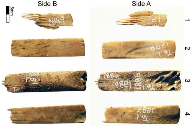 Археологи нашли древние тату-иглы, сделанные из человеческих костей
